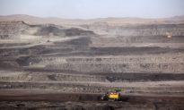 'Climate Chaos:' Greenpeace Warning on 14 Proposed Coal and Gas Plants