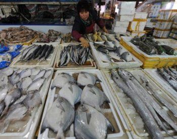 A fish stall in Hefei City. Overuse of antibiotics and fertilizer among farmers is common in China.  (STR/Getty Images)