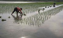 China's Plan to Raise Retirement Age Draws Public's Ire