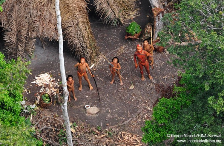 Isolated Tribe of Amazonian Indians Reports 'Massacre' by Illegal Miners