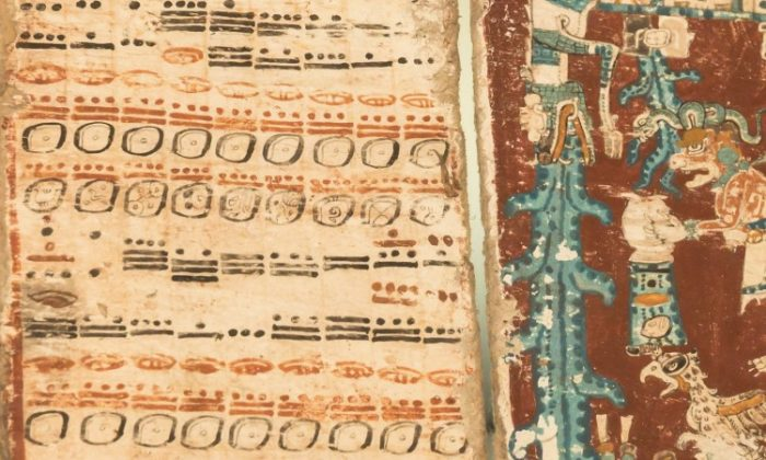 One of four historic Mayan manuscripts that still exist in the world and that together suggest modern civilization will come to an end on December 21, at the Saxon State Library on Nov. 8, 2012 in Dresden, Germany. (Joern Haufe/Getty Images)