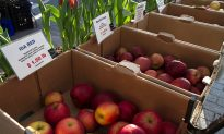 State Legislation Would Aid Apple Growers Hit by Frosts