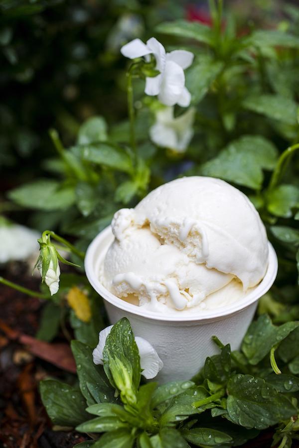 Honey Lavender ice cream. (Samira Bouaou/Epoch Times)