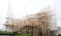 New Phase of Big Bamboo Opens at Met