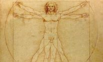 The Science of Organ Transplants