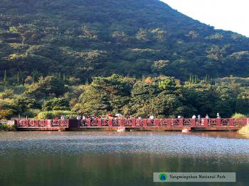 DATUN RECREATION AREA: Datun Nature Park, a volcanic basin, features an azalea restoration area where spectacular blossoms can be viewed in the spring. (Yangmingshan National Park Headquarters)