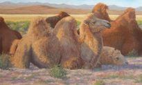 American Artist Susan Fox Paints Genghis Khan's Mongolia
