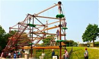 Gorilla Climb latest attraction at Toronto Zoo