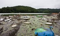 Garbage Collects in South Korea's Water Supply