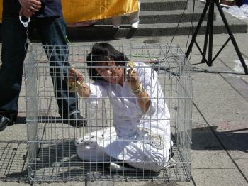 A torture method in which Falun Gong practitioners are held for long periods in a small cage. (Joan Delaney/The Epoch Times)