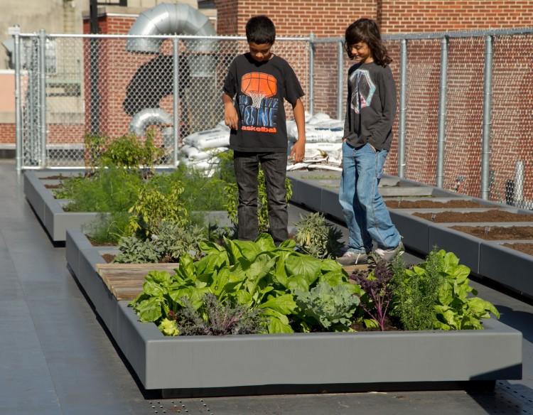 Gardens add life to a growing number of school curriculums community gardens urban farming for Brooklyn urban garden charter school