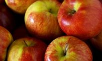 Red and Totally Delicious: The Apple