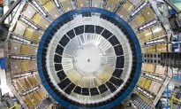 New Particle Discovered at Large Hadron Collider