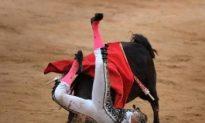 Bullfighting Deemed Illegal in Catalonia, Spain