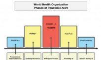 World Flu Alert Level Raised