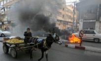 Donkey Bomb Attack at Gaza Border Part of Escalating Violence