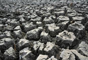 A dried up pond in Tangyin County, Henan Province, photo taken on February 3, 2009. (The Epoch Times)