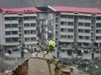 A flower is left on the ruins of a building by relatives of earthquake victims as they mourn at the ruins of earthquake-hit Beichuan county on May 11, 2009 in Mianyang of Sichuan Province, China. (Feng Li/Getty Images)