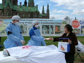 Falun Gong practitioners enact a scene of organ harvesting in China. On his Falun Gong practitioners enact a scene of organ harvesting in China. On his visit to China, practitioners are calling on Foreign Affairs Minister Lawrence Cannon to urge the regime to stop the brutal persecution against their practice and release all prisoners. (Xiaoyan Sun/The Epoch Times)