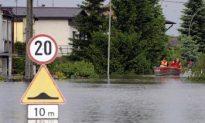 Beavers Take Blame for Poland Floods