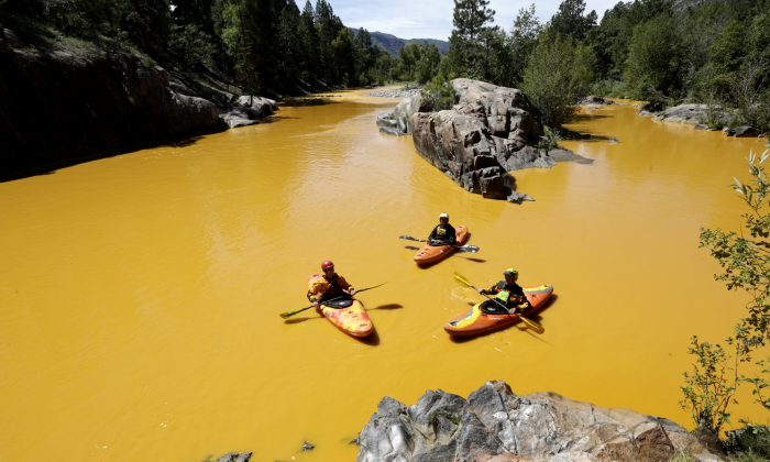 People kayak in the Animas River near Durango, Colo., on Aug. 6, in water colored from a mine waste spill.   (Jerry McBride/The Durango Herald via AP)