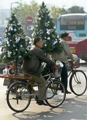 Delivering Christmas trees with bicycles (AFP/Getty Images)