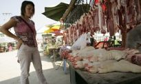 Diseased Pigs Thrown into Rivers in Sichuan