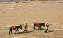 Parched Beijing May Divert Yellow River For Olympics