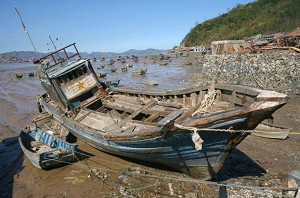 The aftermath of Typhoon Saomai. (China Photos/Getty Images)