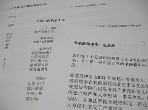 Miao wrote to Chinese Leaders, and national ruling bodies, but never received a reply. (Photo: Yodo Soma)