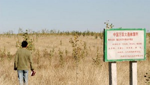 On October 13, 2004, a mainland China reporter came to the Million Forestation Company in Inner Mongolia to investigate its business using the cover of being an investor. But all he saw was a vast area of land covered with weeds. (New Epoch)
