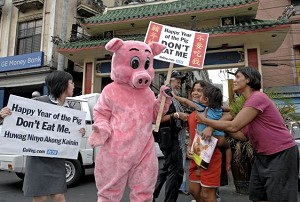 """Manila, Philippines-Animal rights activists hold signs that say """"Happy Year of the Pig, Don't Eat Me!""""  (Jay Directo/AFP Photo)"""
