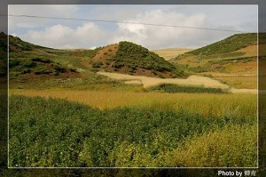 Crop fields in the remote mountain village. (Qing Qing/The Epoch Times)