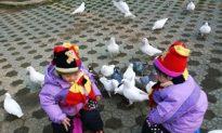 China Is Source of Bird Flu Virus, Study Shows