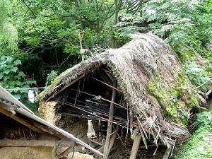 An entire family occupies an uninhabitable hut. (Ben Ben)