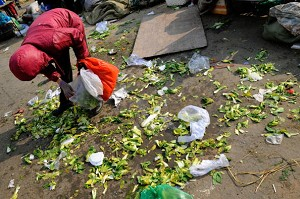 A woman in a Beijing market scavenging for edible vegetables. (Teh Eng Koon/AFP/Getty Images)