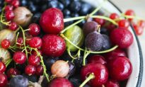 Get Your Fruit Fresh, Local and Sustainable Year-Round