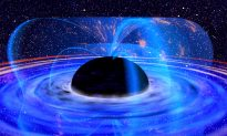 The Fate of the Universe: Heat Death, Big Rip or Cosmic Consciousness?