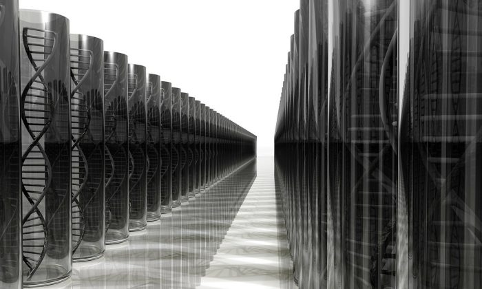 Will we see DNA in the mainframe? (PublicDomainPictures/CC 0)