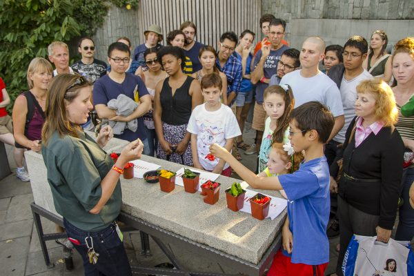Chile Pepper Festival at Brooklyn Botanic Garden. Photo by Julie Markes. (Courtesy of Brooklyn Botanic Garden)