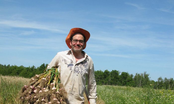 Peter McClusky with freshly harvested garlic. (Photo by Ludwig Morris)