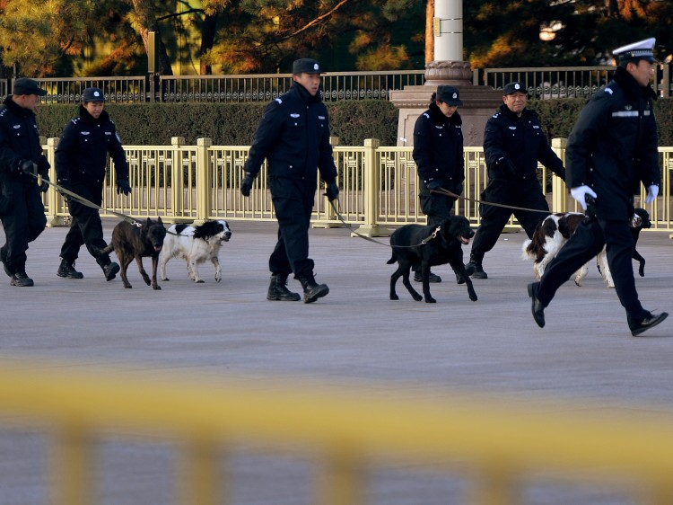 police squad with dogs enforces security