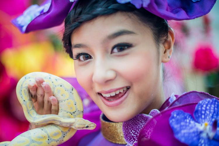 """A model poses with a snake during a snake in Kong Kong on January 10, 2013. The Chinese new year, often referred to as the """"Lunar New Year"""", will mark the year of the snake on February 10.  (Philippe Lopez/AFP/Getty Images)"""