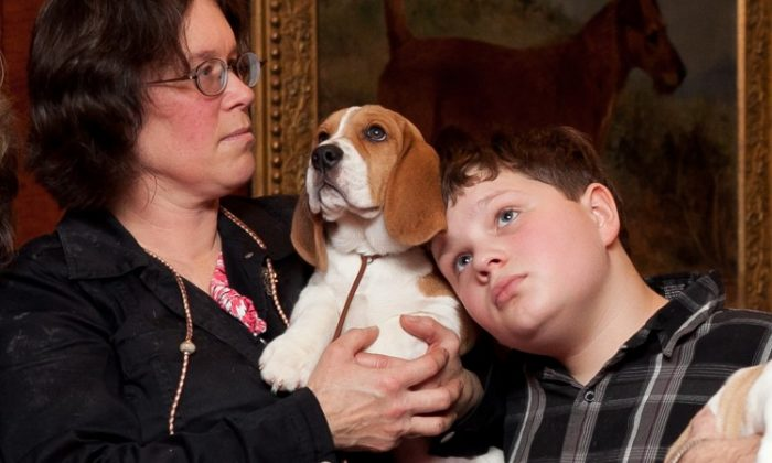 A beagle with his owner. (Samira Bouaou/The Epoch Times)