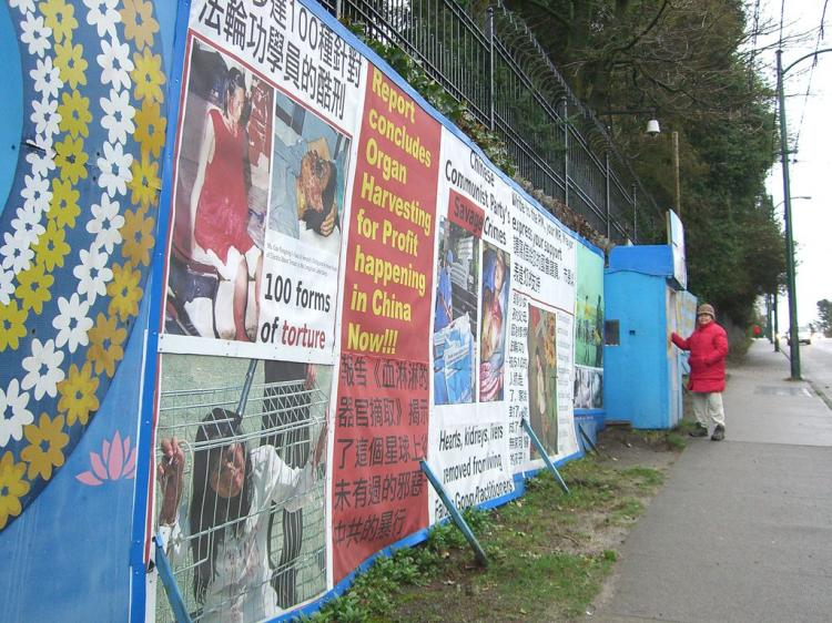 In this file photo, a Falun Gong practitioner stands by the blue hut the group used for shelter during their long-running 24/7 vigil outside the Chinese Consulate in Vancouver. (The Epoch Times)