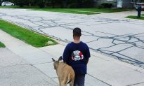 10-Year-Old Walks With This Deer Every Morning Before School. The Reason? Crying…