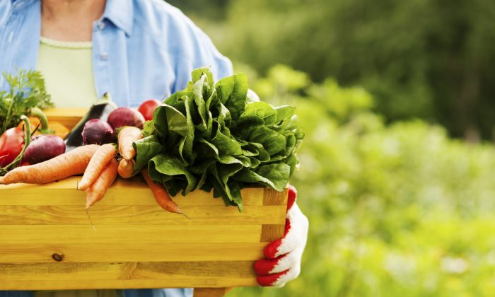 Top 7 Foods That Slow Your Aging