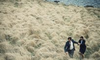 London Film Festival Review: 'The Lobster'
