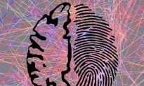 Brain Activity Is as Unique—and Identifying—as a Fingerprint