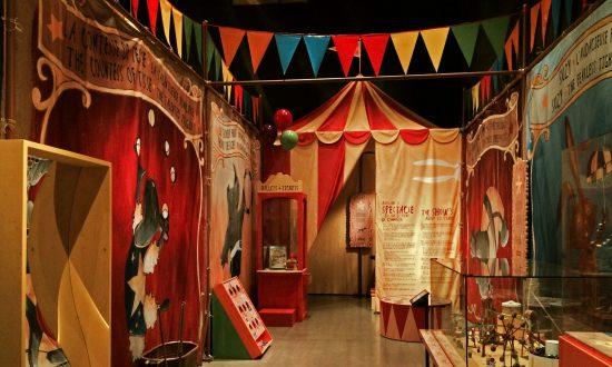Mister Rabbit's Circus: Charming, Educational, Entertaining